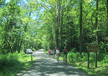 biking cades cove