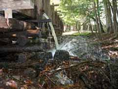 cable mill cades cove