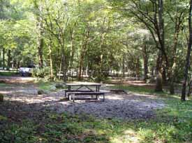 smokemont picnic area