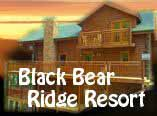 Cabins with pool for Bear ridge cabin rentals