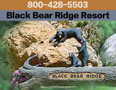 black bear ridge resort pigeon forge